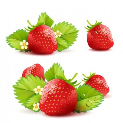Free vector Vector background  strawberry theme background 05 vector