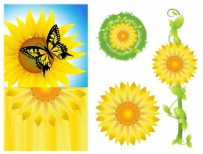 Free vector Vector background  Sunflower Background Vector Graphics