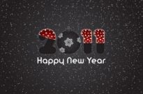 Free vector Vector misc  2011 new year clip art