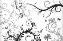 Free vector Vector floral  5 Floral Ornaments