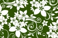 Free vector Vector abstract  Abstract Floral Ornament on Green Background