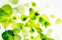Free vector Vector background  Abstract Green Leaves