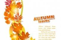 Free vector Vector background  beautiful autumn leaf background 02 vector