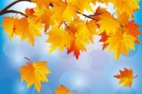 Free vector Vector background  beautiful autumn leaf background 05 vector