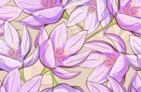 Free vector Vector flower  beautiful flower background 05 vector