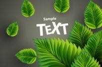 Free vector Vector background  beautiful green background 01 vector