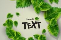Free vector Vector background  beautiful green background 02 vector