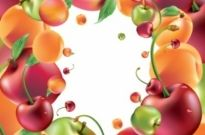 Free vector Vector misc  delicious fruit 01 vector