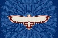Free vector Vector background  eagle totem and beautiful vector background