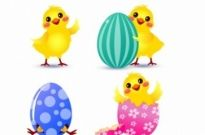 Free vector Vector misc  Easter Chick set