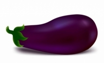 Free vector Vector misc  Egg plant