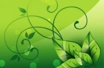 Free vector Vector background  Elegant Nature Background