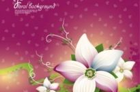 Free vector Vector background  exquisite floral design background 02 vector