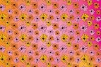 Free vector Vector pattern  Flowers Pattern Vector