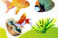Free vector Vector Animal  Free Vector Fish