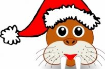 Free vector Vector clip art  Funny walrus face with Santa Claus hat