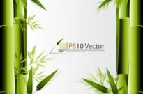 Free vector Vector background  green bamboo background text template vector 1