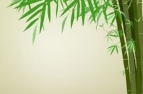 Free vector Vector background  green bamboo background text template vector 2