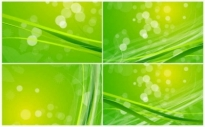 Free vector Vector background  Green Nature Background Pack