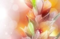 Free vector Vector background  Pink Flowers with Colorful Background