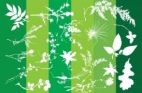 Free vector Vector Silhouettes  Plants Silhouettes Nature Graphics