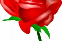 Free vector Vector clip art  Red Rose clip art