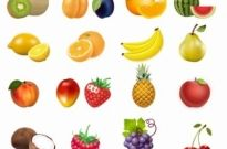 Free vector Vector icon  Set of Fruits