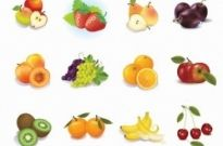 Free vector Vector misc  Set of Fruits Vector Graphics