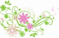 Free vector Vector floral  Spring Flower