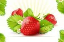 Free vector Vector background  strawberry theme background 01 vector