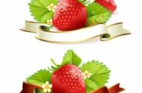 Free vector Vector background  strawberry theme background 03 vector