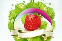 Free vector Vector background  strawberry theme background 04 vector