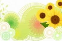 Free vector Vector background  Sunflower Abstract Vector Background