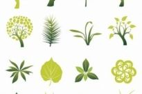 Free vector Vector misc  Tree and Leaf Vector Set
