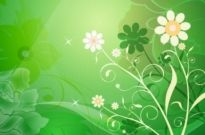 Free vector Vector flower  Vector Abstract Flower with Green Background