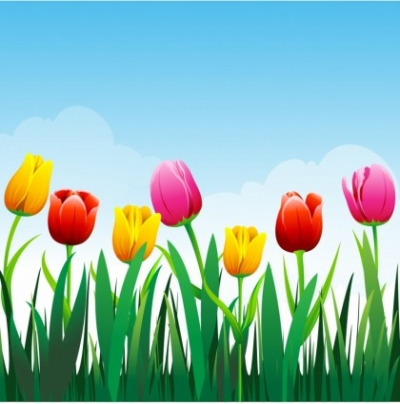 Free vector Vector flower  Tulip flower background