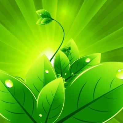 Free vector Vector background  Vector Background with Green Leaves
