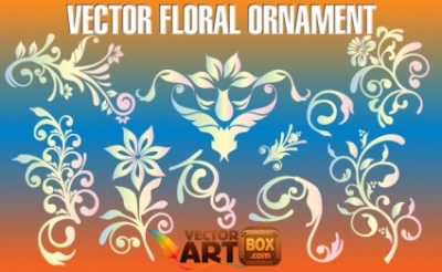 Free vector Vector floral  Vector Floral Ornament