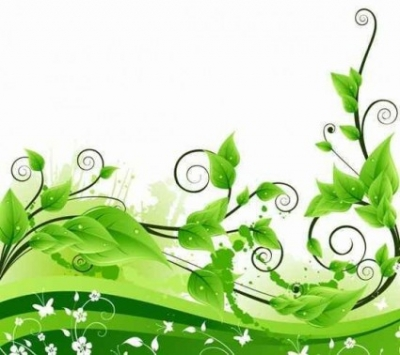 Free vector Vector background  Vector Green Floral Background