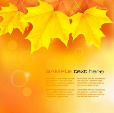 Free vector Vector background  Yellow autumn leaves background